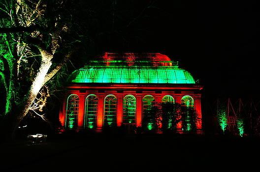 Christmas at The Botanics 18 by Nik Watt