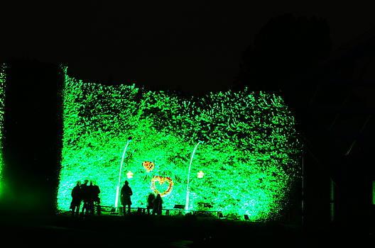 Christmas at The Botanics 19 by Nik Watt
