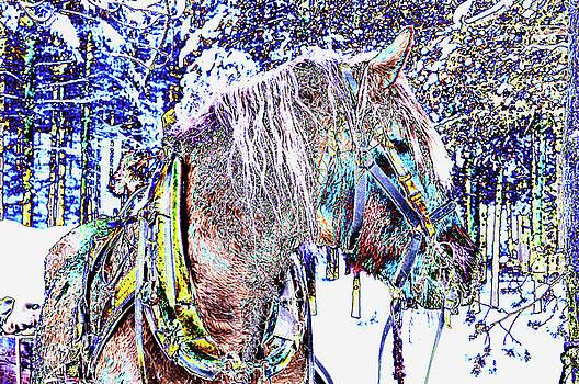 Christmas  Horse by Tamara Sushko
