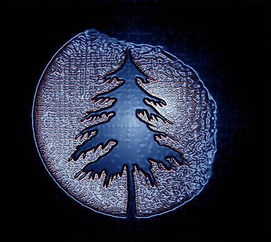Christmas Tree by Debolina Moitra