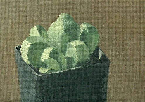 Chunky Succulent by Amy Tennant
