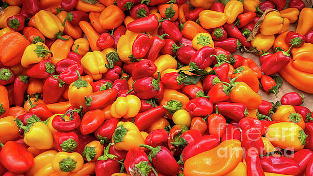 Close Up View of Small Bell Peppers of various colors by PorqueNo Studios