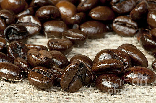 Coffee beans by Deyan Georgiev