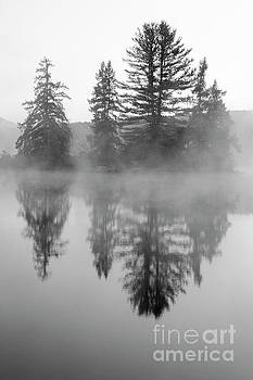 Coffin Pond - Sugar Hill New Hampshire by Erin Paul Donovan