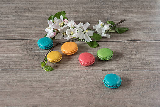 Colorful macaroons by Julian Popov
