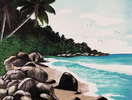 Combate Beach by Iris  Mora