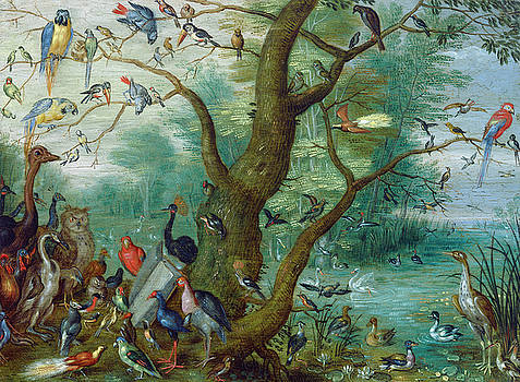 Circle of Jan van Kessel -  Concert of Birds