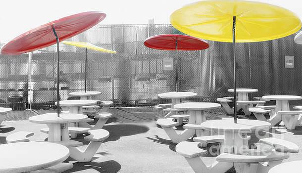 Coney Island by Raymond Earley