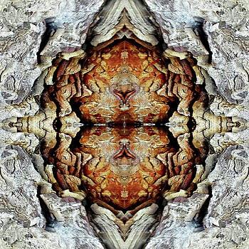 Cortex by Jesus Nicolas Castanon