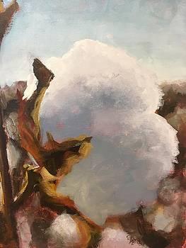 Cotton Boll by Susan E Jones