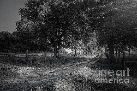 Country Road by Tim Wemple