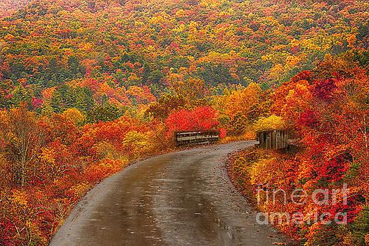 Mountain Road by Geraldine DeBoer