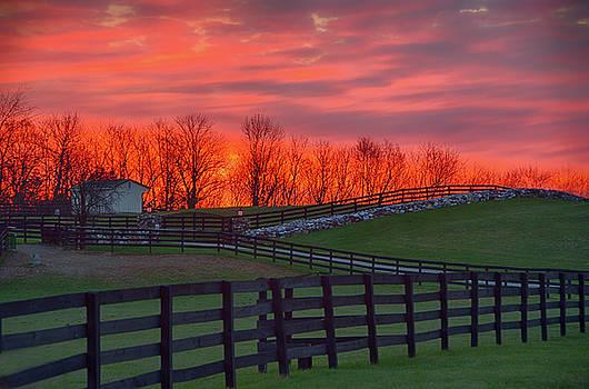 Country Sunrise by Eleanor Bortnick