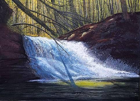 Creation Falls by Gary Edward Jennings
