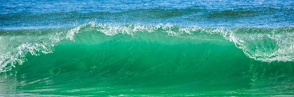 Paula Porterfield-Izzo - Cresting Wave