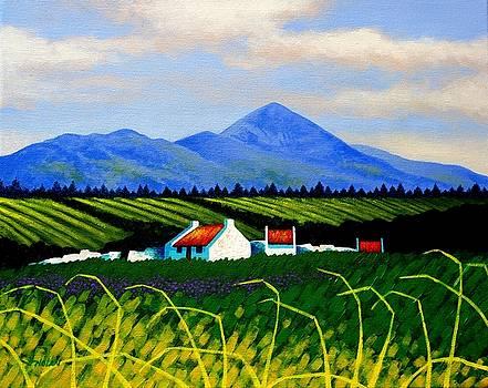 Croagh Patrick County Mayo by John  Nolan