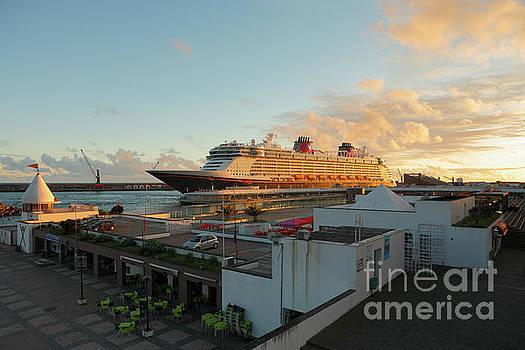 Gaspar Avila - Cruise ship