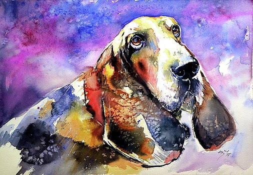 Cute basset hound by Kovacs Anna Brigitta