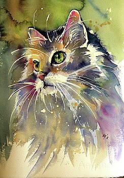 Cute cat by Kovacs Anna Brigitta