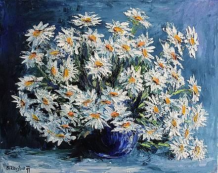 Daisies by Stanislav Zhejbal