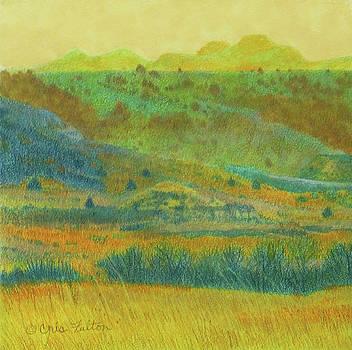 Dakota Badlands Dream by Cris Fulton