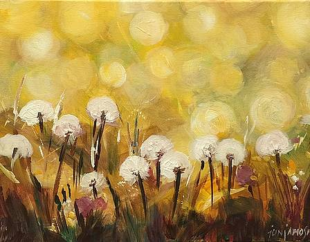 Dandelions by Jun Jamosmos