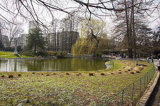 Newnow Photography By Vera Cepic - Danube park in the center of the city of Novi Sad