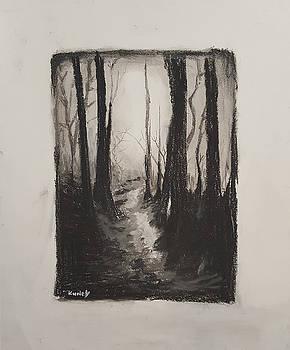 Dark Woods by Adekunle Ogunade