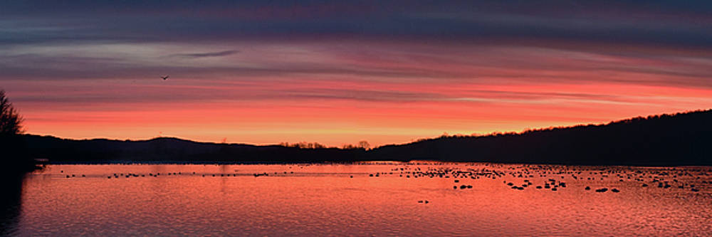 Dawn At Middle Creek by Dan Myers