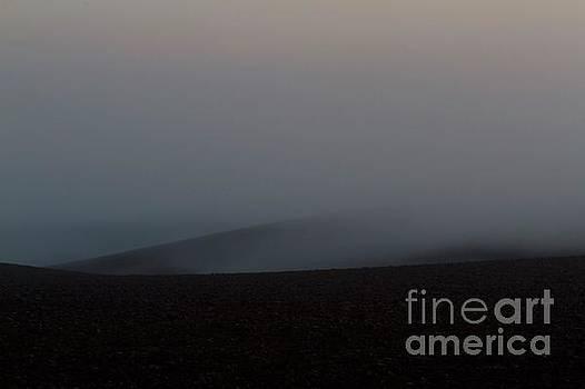 Dawn mist by Gary Bridger