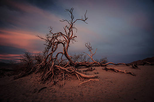 Death Valley by Chris Burke