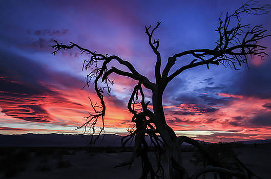 Death Valley Sunset by Chris Burke