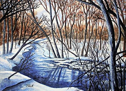 Deep Woods Wisconsin by Thomas Kuchenbecker