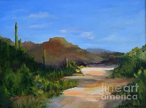 Desert Walk by Pamela Shearer