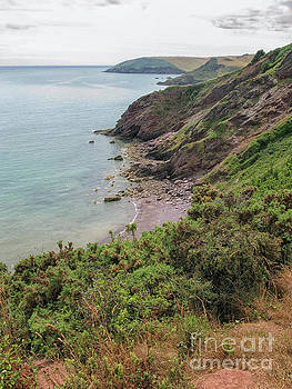 Patricia Hofmeester - Devon coastal view