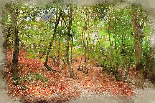 Digital watercolour painting of Vibrant Autumn Fall forest lands by Matthew Gibson