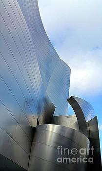 Gregory Dyer - Disney Concert Hall