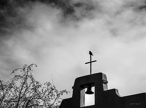 Divine Lookout by Julie Basile