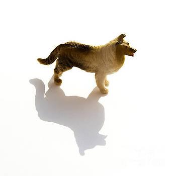 BERNARD JAUBERT - Dog figurine