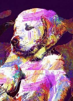 Dog Puppy Golden Retriever  by PixBreak Art