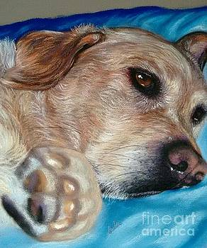 Dog Tired by Linda Eversole