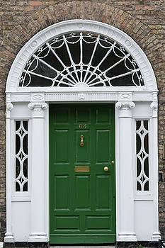 Doors of Dublin by Nathan Larson
