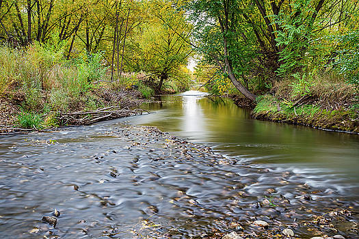 Down Stream by James BO Insogna