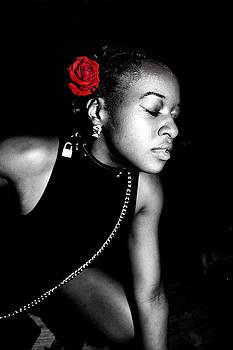 Dream of a Rose by David Ryzman