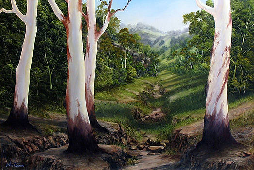 Dry Creek by John Cocoris