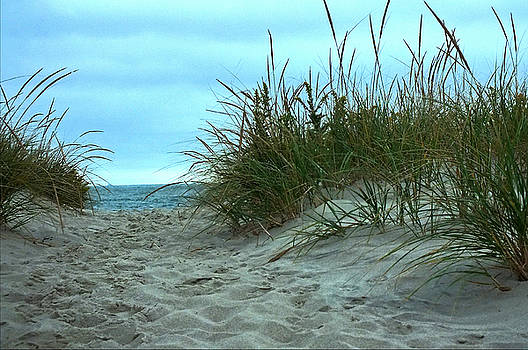 Dune  by William Walker