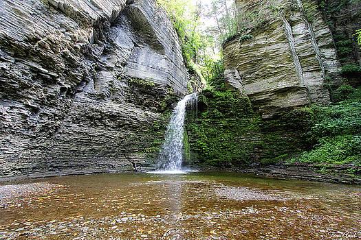 Eagle Cliff Falls in NY by Trina Ansel