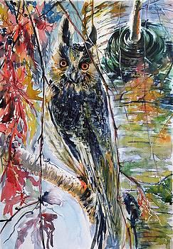 Eagle owl by Kovacs Anna Brigitta