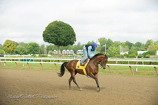 Early Morning Workout at Saratoga 15 by Michael Gallitelli