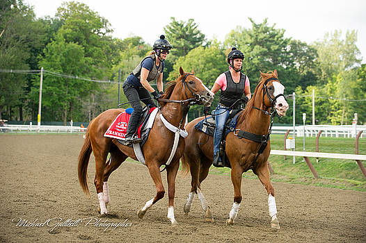 Early Morning Workout at Saratoga 18 by Michael Gallitelli